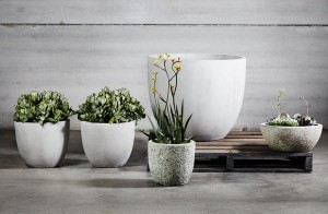 #In Home Styling #Homewares #Pots #Indoor Plants
