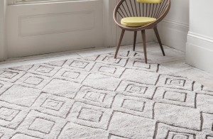 #Armadillo #Armadillo Rugs #Home Styling Perth #Interior Designer Perth #Gazelle