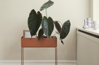 #Ferm Living #Interior design #Home Styling #homewares #pots
